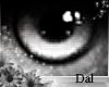 `Ⓓ`Doll Eyes 15