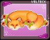 Sleepy fox BADGE