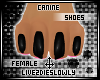 .L. Canine Paws Black