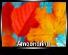 AM:: Fall Foliage Enh