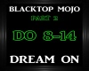 Blacktop Mojo~Dream On 2