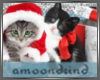 AM:: Christmas Kitties