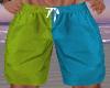Bl and Grn Swim Trunks