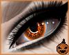 £. Halloween V5