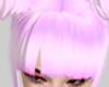 Asian Buns! [Pink]