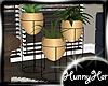 •Navy• Plant Trio