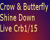 Crow & ButterFly Live