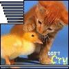 sticker_12908428_19726129