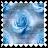 sticker_13059961_27727579