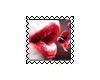 sticker_22030749_36866004