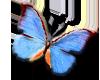 sticker_14233863_25657021
