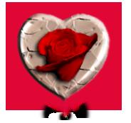 sticker_13289695_29811502