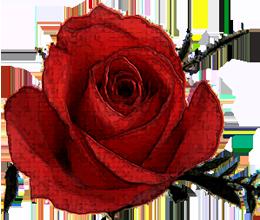 sticker_20721391_46897561