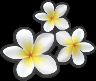 sticker_14950613_24509577