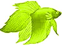sticker_29732997_47319803