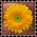 sticker_21920493_47510364
