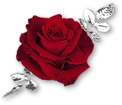 sticker_181657506_2